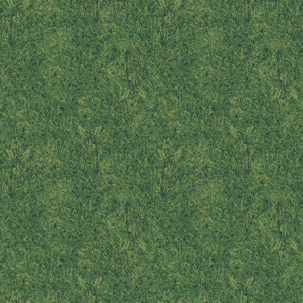 grass field  green