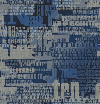 poetry slam  blue