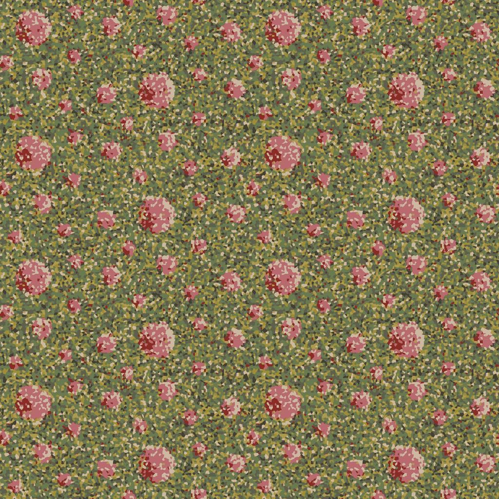 pompon flower  multi