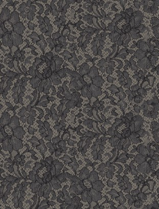 silk lace grey