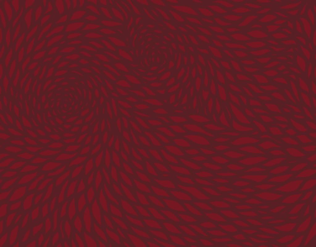 chrysanthemum  red