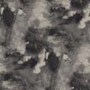 pigment  grey