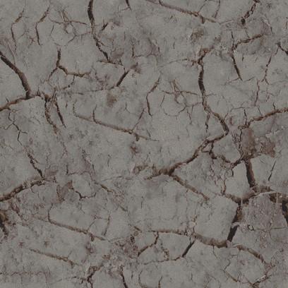 mudcrack  grey