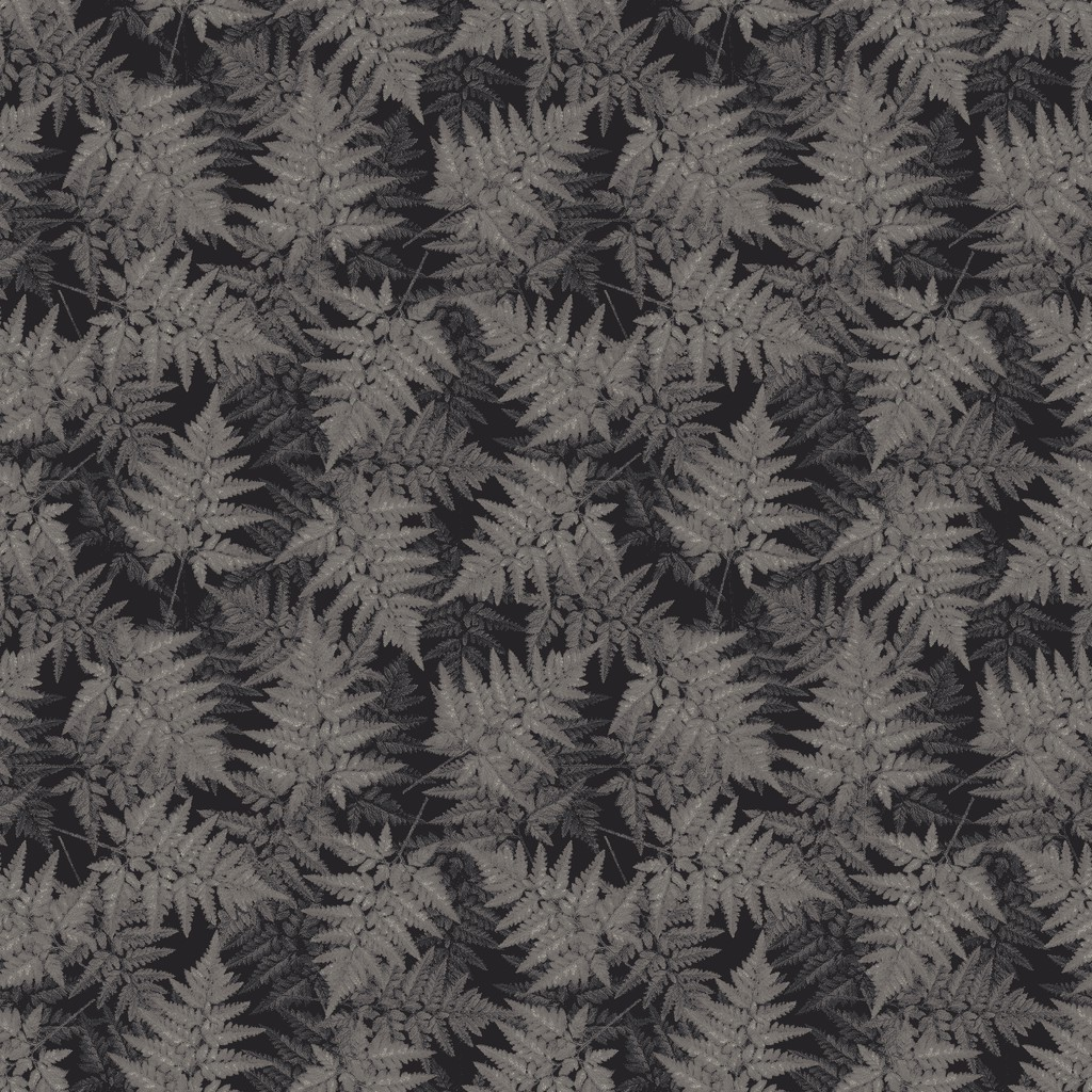 jungle floor  grey