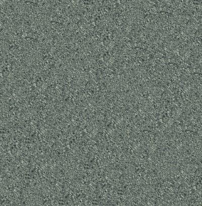 wavy shells  grey