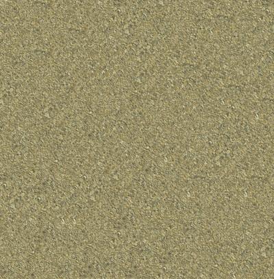 wavy shells  golden