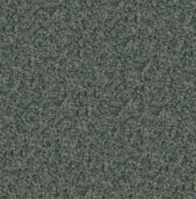 pine needles  grey