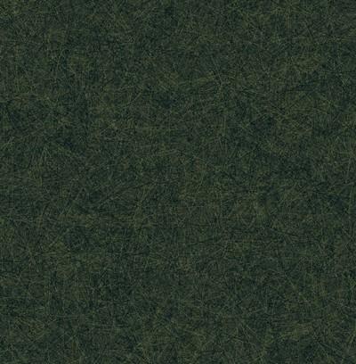 trails  green